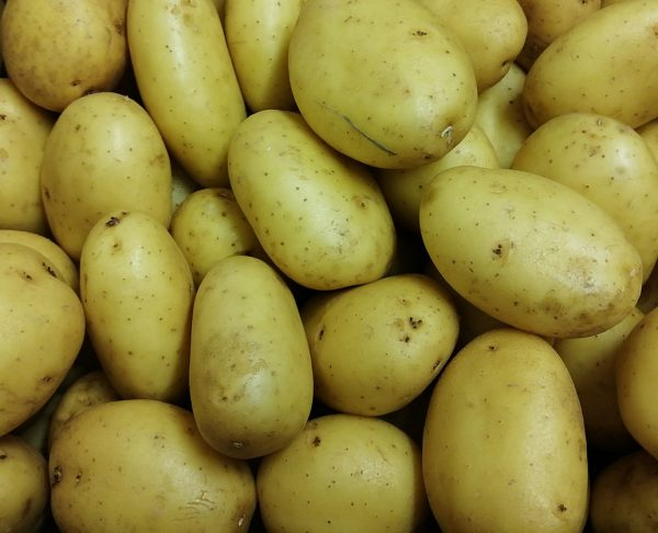 Ferme de Coubertin Légumes